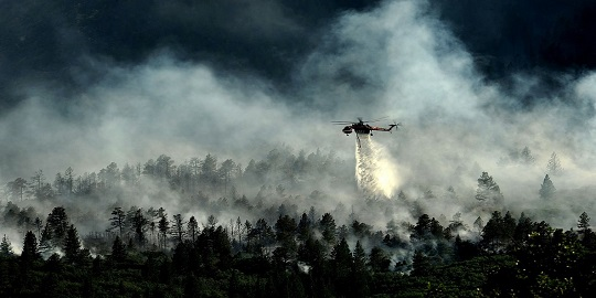 Prevent and Extinguish Forest Fires by Increasing Awareness of irAEs